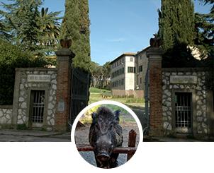 Appartamenti per Vacanze a Magliano in toscana